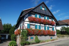 Sasbachwalden Blumenschmuck